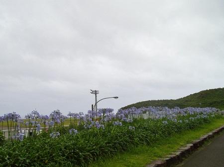 2011-07-05 167.JPG