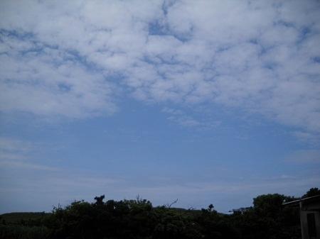 2011-07-24 003.JPG