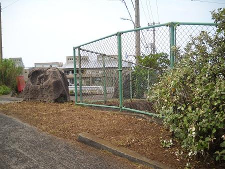 2011-08-01 018.JPG
