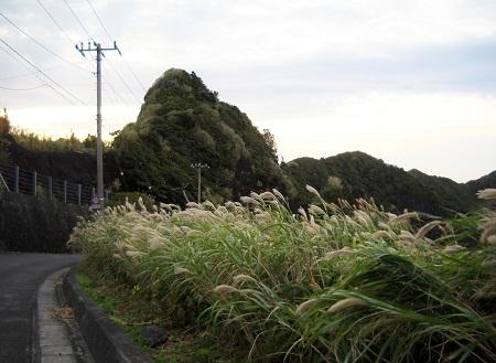 2011-10-03 006.JPG