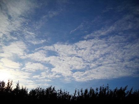 2011-10-07 002.JPG