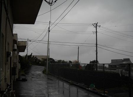 2011-12-22 010.JPG