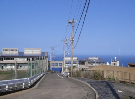 2011-2-18 006.JPG