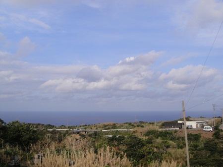 2011-2-24 009.JPG