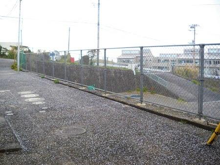 2012-01-26 008.JPG