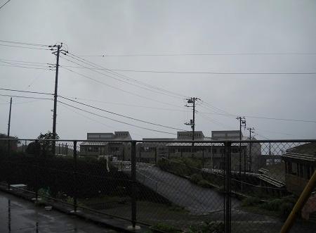 2012-07-07 003.JPG